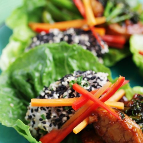 Teriyaki Broccoli Tempeh Rice Parcels